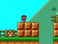 Game Mario Forever Flash. Play online