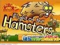Game Flying Hamster . Play online