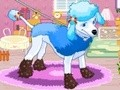 Game Fluffy Poodle . Play online
