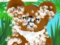 Game Caring for koala . Play online