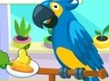 Game Caring for parrots . Play online