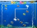 Game Marine fan . Play online